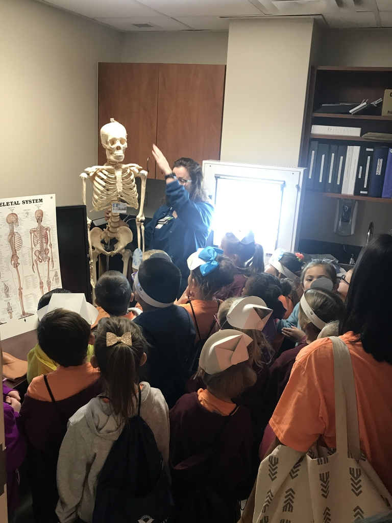 Learning about bones!